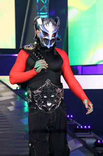Recap, Review And Results Of 2012 TNA Final Resolution