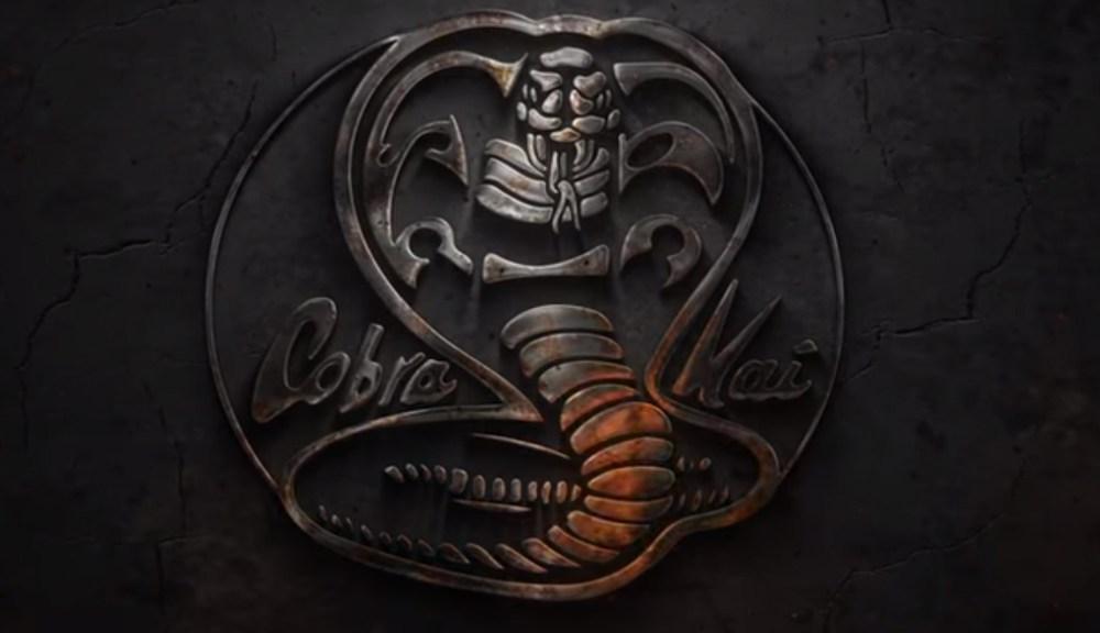 Review And Recap Of Cobra Kai (Youtube Red Series)